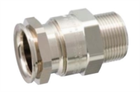 Ex- Armored & Unarmored Cable Glands