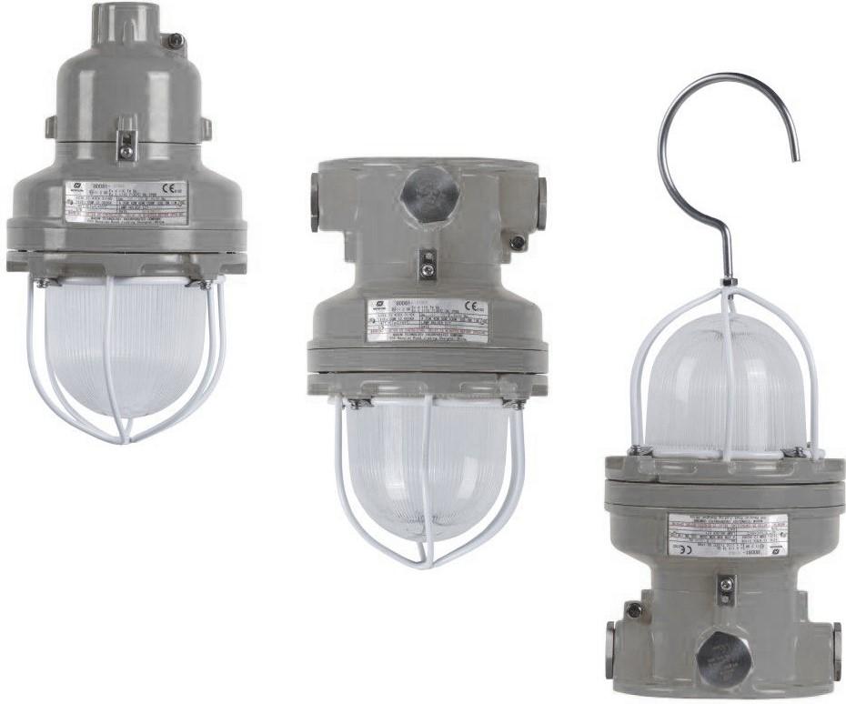 BDD81 Series Exproof Lighting Fixture 100W